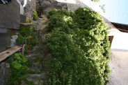 60-Kloster Saeben