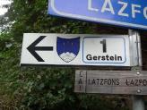 09-Gerstein