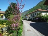 33-Dorfstrasse